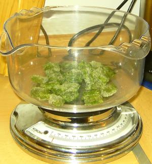 Spinat Tiefgefroren