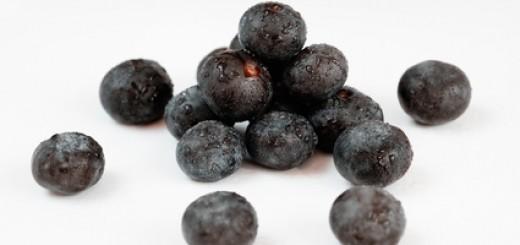 Acai Frucht