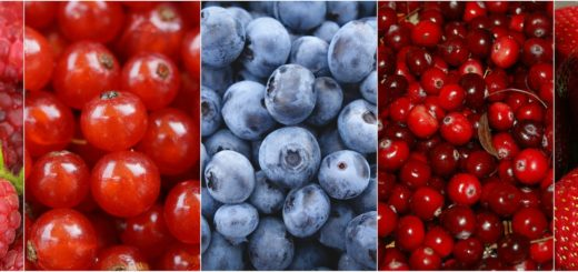 berries-1499900_1920